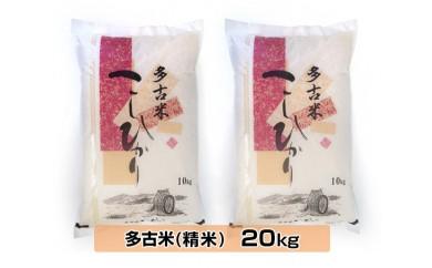 No.035 多古米こしひかり 精米20kg