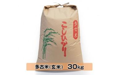 No.037 多古米こしひかり 玄米30kg