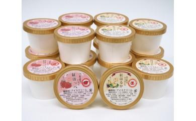 No.022 紅はるかと紅ほっぺのアイスクリーム16個セット