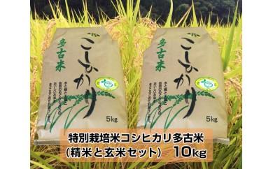 No.012 特別栽培米コシヒカリ多古米(精米と玄米セット)