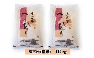 No.011 多古米こしひかり 精米10kg