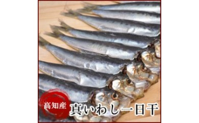 BB220 高知県産 真いわし一日干10串 イワシ(鰯)干物 岡岩商店 【650pt】
