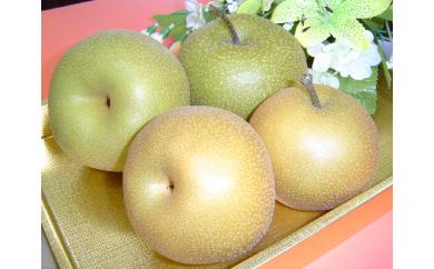 A30-627 鶴岡市産和梨(幸水 3kg)