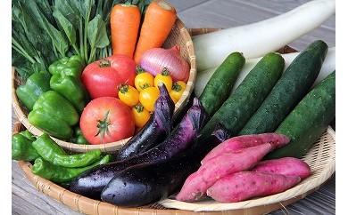A-6 季節の野菜詰め合わせ