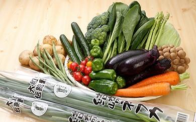 30-17 季節の地元野菜詰め合わせセット (年1回)