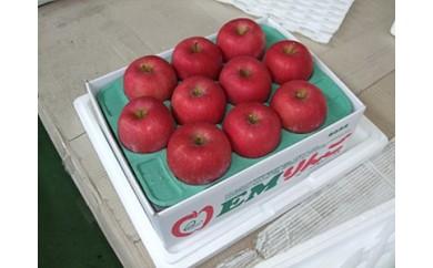 A077 EMりんご 約3kg