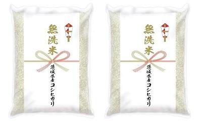(388)【平成30年産】茨城県産コシヒカリ無洗米10kg(道の駅さかいオリジナルセレクション)