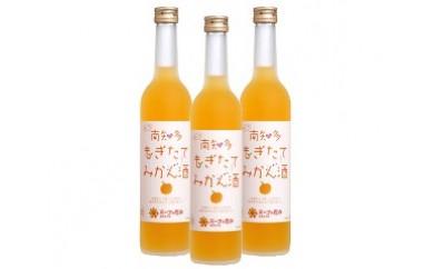 53.もぎたてみかん酒
