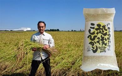 [№5882-0018]竹米6kg(竹パウダーを使って栽培した米)