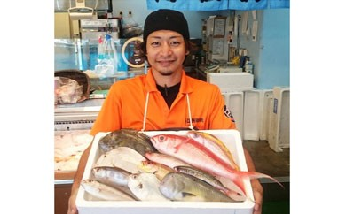 【AN04】おまかせ鮮魚セット(約4kg)