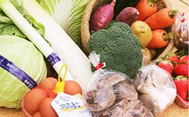 [№5824-0116]旬の野菜を詰込みました!小野市産季節の野菜セット
