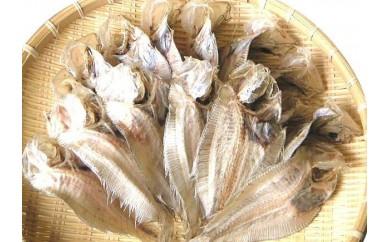 A018【63pt】 尾道名物 でべら(中サイズ)25尾 干物