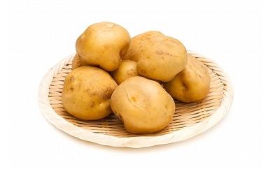[0721](生産者直送)熟成じゃがいも2種5kgセット(吉川農場)