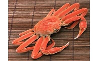 【0802】 ボイルずわい蟹(姿)