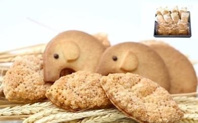 【A001】「黄金のリーフパイ」「頭のよくなる白色ぞうさんクッキー」セット