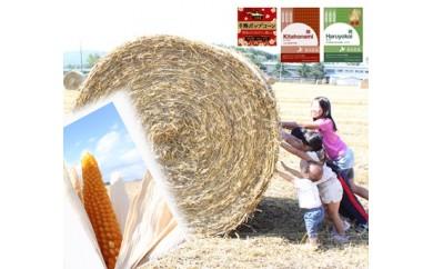 【Q002】本別町前田農産生まれ「十勝ポップコーン」・パン用&料理用小麦粉「小麦畑セット」