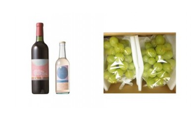 B-37 安心院*小さなワイン工房ワイン(赤・ピオーネ)&ぶどう21【季節限定】