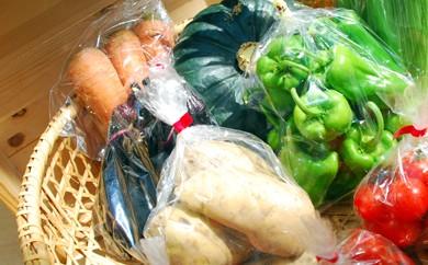 A-9 白神野菜セット 5kg