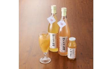 AE02 搾りたて林檎ジュ―ス&りんごネクター【6p】