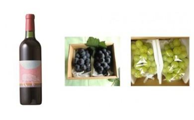 C-6 安心院*小さなワイン工房ワイン(赤)&ぶどう28 【季節限定】