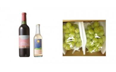 B-36 安心院*小さなワイン工房ワイン(赤・デラウエア)&ぶどう20【季節限定】