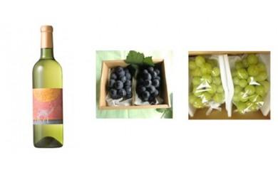 C-7 安心院*小さなワイン工房ワイン(白)&ぶどう29 【季節限定】