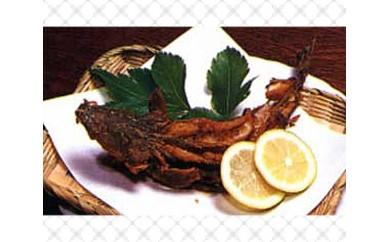 No.109 【篠島】漁師民宿たから舟 篠島の天然海の幸たっぷり味わえるペア宿泊券
