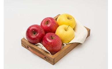 120P3401 旬の果物セット15kg【120P】