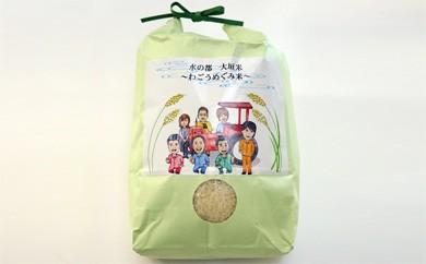 水の都 大垣米 ~わごうめぐみ米~【特別栽培米レンゲハツシモ】