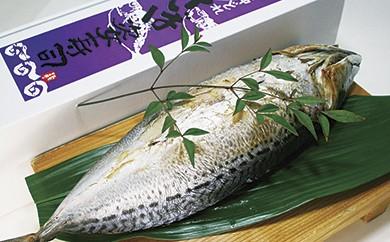 B-7 割烹吉野 鯖の姿寿司