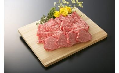 N020 大府市特産A5ランク黒毛和牛 極上ヒレステーキ130g×4枚入り + 極上ロース肉すきしゃぶ用1kg【370pt】