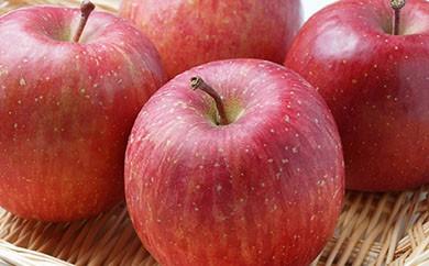 A087 【期間・数量・インターネット限定】りんご サンふじ 特秀 28玉【74pt】