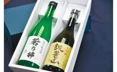 101.大吟醸「飯豊山」720ml 特別純米酒「若乃井」720ml