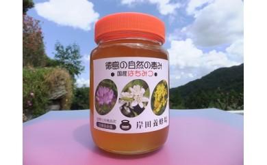 天然はちみつ(百花蜜)600g