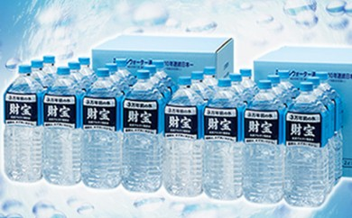 [№5750-0070]日本が選んだ水 財宝2L×12本×2箱