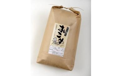 【輪島のお米】奥能登コシヒカリ10kg(29年産、玄米)