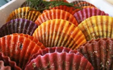 ぷりっと引き締まった肉厚な身と濃厚な甘味が人気の緋扇貝!18枚入り