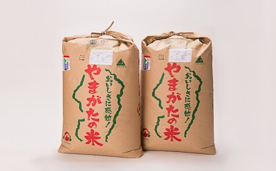 35-(1)【平成29年産米】「大石田産特別栽培米」はえぬき60㎏(玄米)