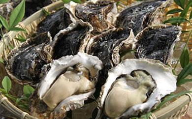 蒲江産岩牡蠣(殻付き一粒牡蠣)100~130gサイズ20個入り