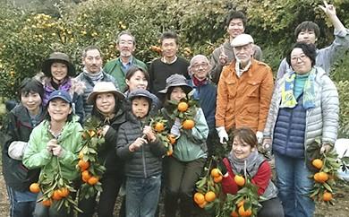 [№5691-0167]農業体験-農家の一日体験-