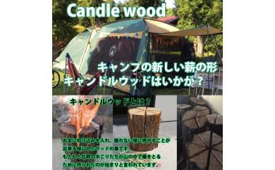 キャンプの新しい薪の楽しみ方。キャンドルウッド