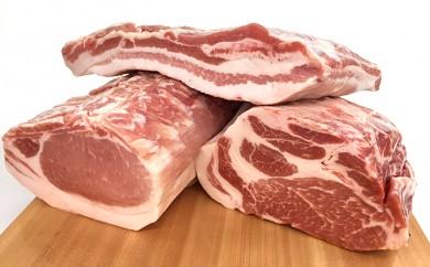 [№5787-0102]飛騨高山豚焼肉用1kg