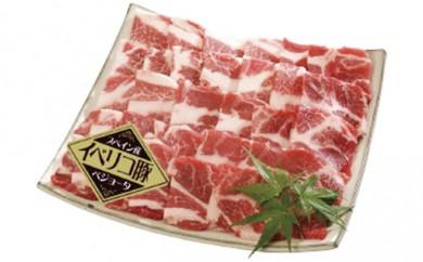 [№5809-0603]イベリコ豚 ベジョータ焼肉(304k-4)