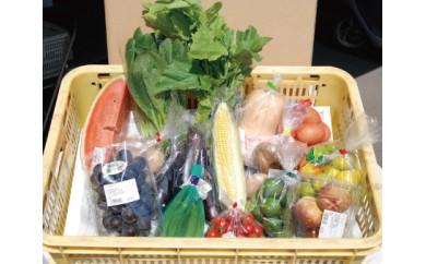 JA新居浜市農産物直売所 あかがね市「四季菜広場」より 地元産旬野菜とフルーツの詰め合わせ