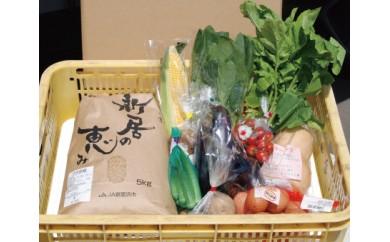 JA新居浜市ブランド米「新居の恵み」(コシヒカリ)5kgと季節の野菜セット