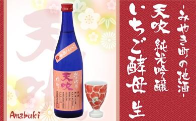 B27-A みやき町の地酒「天吹」 純米吟醸 いちご酵母 生&かんぱいこっぷ