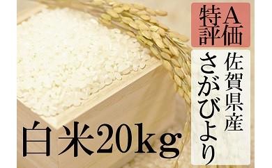 D-11 【特A】厳選!佐賀県産さがびより 白米20kg