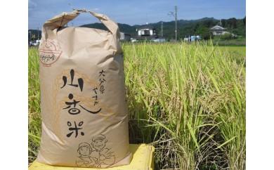 B-24 山香ゆうきの会の米30kg(玄米:あきさかり)