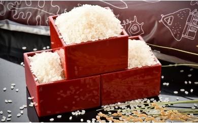 [A003] のと米 精米5kg