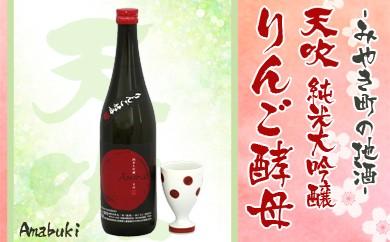 B78-A ★季節限定★みやき町地酒「天吹」純米大吟醸りんご酵母&かんぱいこっぷ